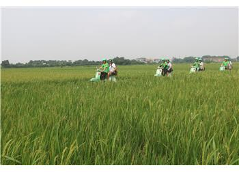 vespa tour hanoi - Red River Delta Countryside & Rural Villages 5 hours
